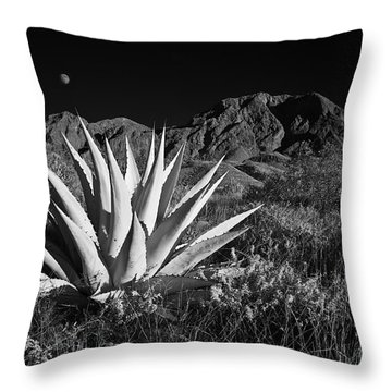 Agave And Moonrise Throw Pillow