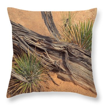 Agave And Weathered Branch Throw Pillow