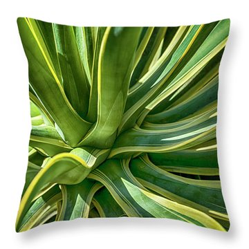 Agave Burst 2 Throw Pillow