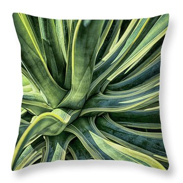 Agave Burst 3 Throw Pillow