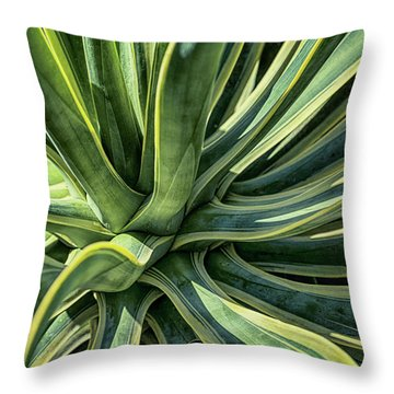 Agave Burst 4 Throw Pillow