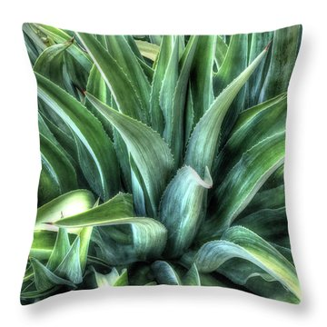 Throw Pillow featuring the photograph Agave by Lynn Geoffroy