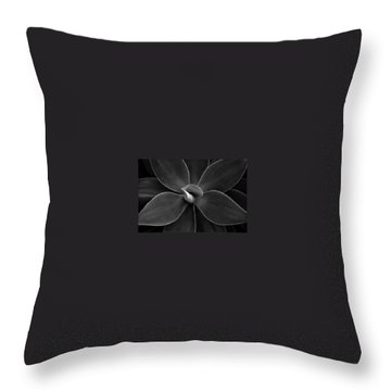 Agave Leaves Detail Throw Pillow
