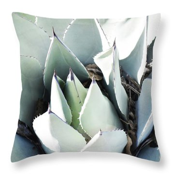 Throw Pillow featuring the photograph Agave Plant Leaves by Andrea Hazel Ihlefeld