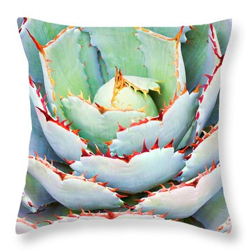 Throw Pillow featuring the photograph Agave by Ram Vasudev