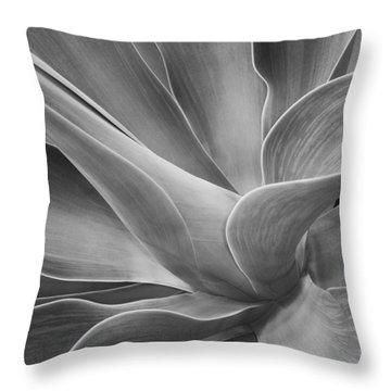 Agave Shadows And Light Throw Pillow