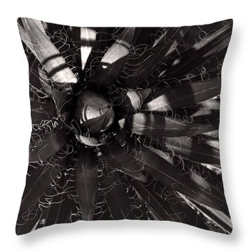 Agave Throw Pillow by Steve Bisgrove