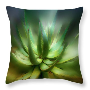Agave Sunrise Throw Pillow