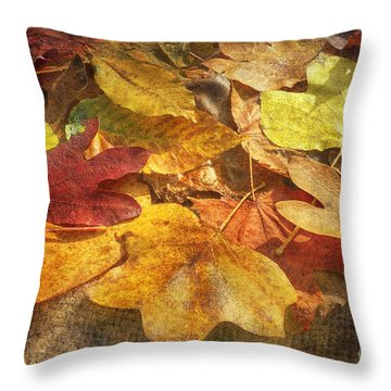 Age Of Character Throw Pillow