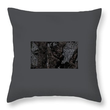 Age Throw Pillow