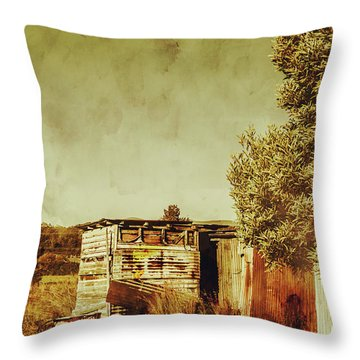 Shack Throw Pillows