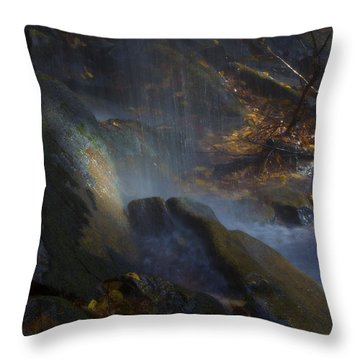 Throw Pillow featuring the photograph Aglow by Ellen Heaverlo