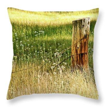 Aglow Throw Pillow by Melanie Alexandra Price