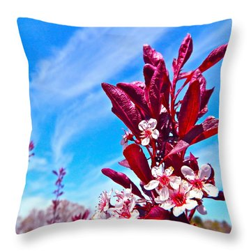 Aglow With Beauty Throw Pillow