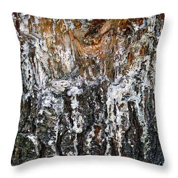 Throw Pillow featuring the photograph Agony And Ecstasy by Lynda Lehmann