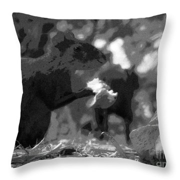 Agouti At Supper Throw Pillow