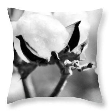 Agriculture- Cotton 2 Throw Pillow