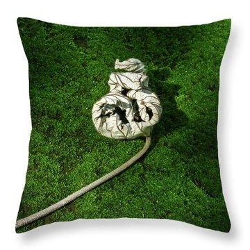 Aguished Leaf Throw Pillow by Douglas Barnett