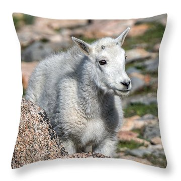 Ahhh Da Baby Throw Pillow