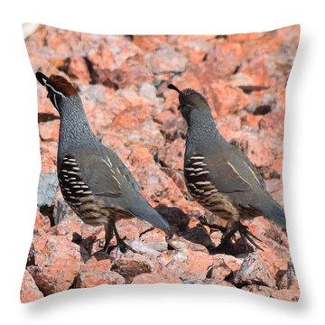 Ahhhh My Little Desert Quail Throw Pillow by John Glass