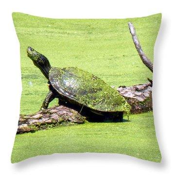 Ahhhhh ... So Warm Throw Pillow