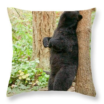 Ahhhhhh Throw Pillow