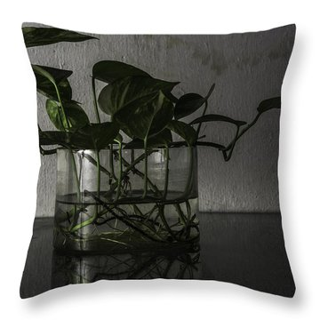 Aimple Throw Pillow by Rajiv Chopra
