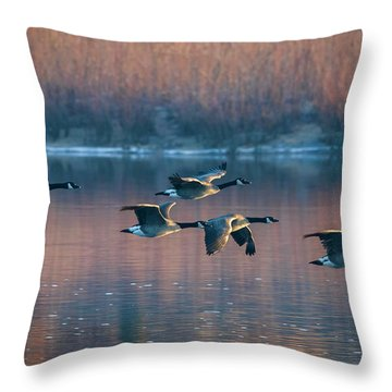 Throw Pillow featuring the photograph Air Canada by Ricky L Jones