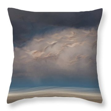 Born To Fly Throw Pillow