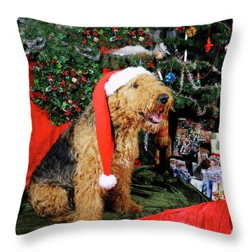 Airedale Terrier Dressed As Santa-claus Throw Pillow