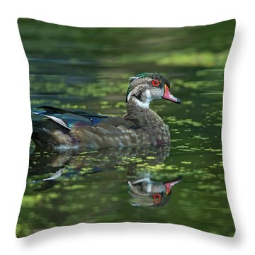 Throw Pillow featuring the photograph Aix Sponsa.. by Nina Stavlund