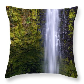Throw Pillow featuring the photograph Akaka Falls by Aaron Whittemore