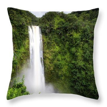 Throw Pillow featuring the photograph Akaka Falls by Ryan Manuel