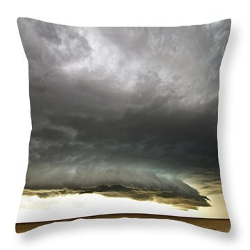 Akron Co Beast Throw Pillow