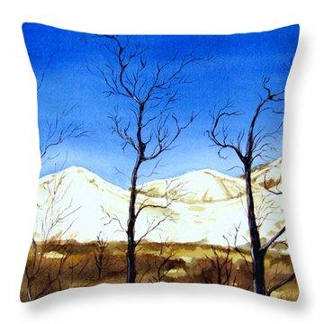 Alaska Blue Sky Day  Throw Pillow by Brenda Owen