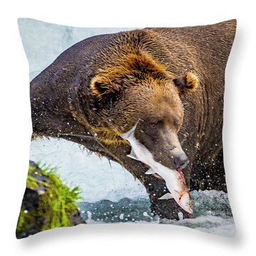 Alaska Brown Bear Throw Pillow