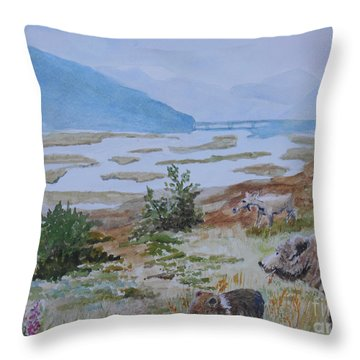 Alaska - Denali 2 Throw Pillow