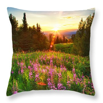 Alaska Field Throw Pillow