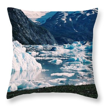 Alaska In The Spring Throw Pillow by Judyann Matthews