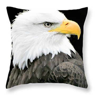 Alaskan Bald Eagle Throw Pillow by Merton Allen