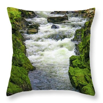 Alaskan Creek Throw Pillow