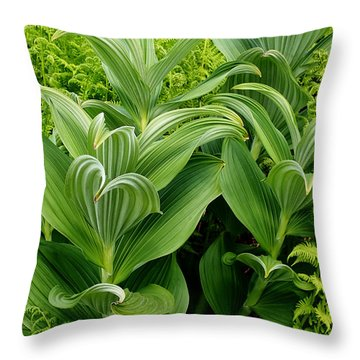 Alaskan Field Foliage Throw Pillow