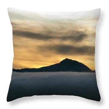 Alaskan Gold Throw Pillow