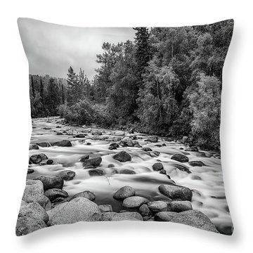 Alaskan Stream In Black And White Throw Pillow