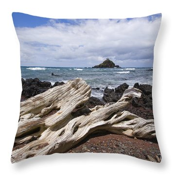 Alau Islet, Driftwood Throw Pillow by Ron Dahlquist - Printscapes