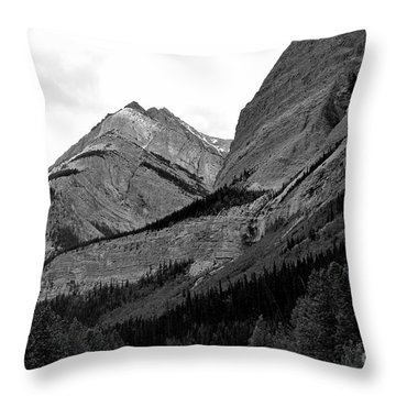Throw Pillow featuring the photograph Alberta, 2015 by Elfriede Fulda