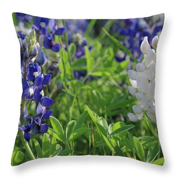 Albino And Blue Bluebonnet Throw Pillow by Robyn Stacey