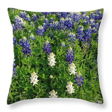Albino And Bluebonnet Field Throw Pillow by Robyn Stacey