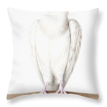 Albino Crow Throw Pillow by Nicolas Robert
