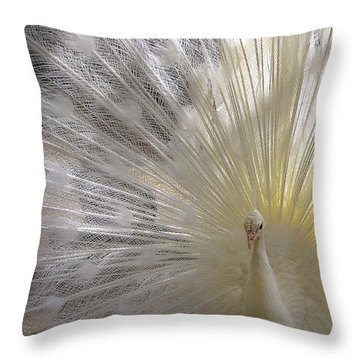 A Leucistic Peacock Throw Pillow
